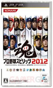 Pro Baseball Spirits 2012 covers yakyuu logo vignette 28.02 (3)