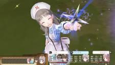 Atelier Meruru Plus 07.01.2013 (17)