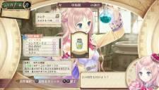 Atelier Meruru Plus 07.01.2013 (6)