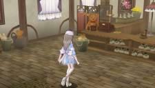 Atelier Totori Plus 01.10.2012 (23)