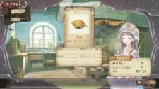 Atelier Totori Plus 22.11.2012 (8)