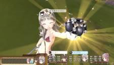 Atelier Totori Plus 30.10.2012 (24)