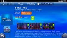 Beats Trellis logo 13.02.2013 (3)