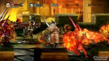 Dragon's Crown 05.06.2013 (8)