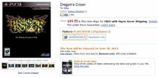 dragon crown 29.05