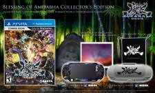 Muramasa Rebirth collector