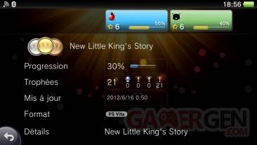 New Little King's Story trophees  01.10.2012.