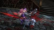Ninja Gaiden Sigma 2 Plus 07.12.2012 (4)