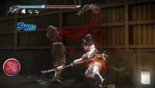 Ninja Gaiden Sigma 2 Plus 12.02.2013. (35)