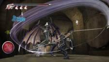 Ninja Gaiden Sigma 5 Plus 01.02.2013. (7)