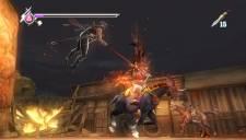 Ninja Gaiden Sigma Plus 013