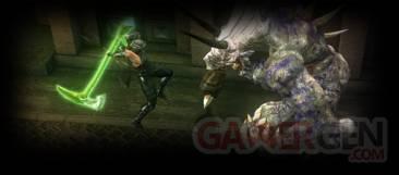 Ninja Gaiden Sigma Plus 21
