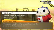 Persona 4 The Golden 28.01.2013 (10)