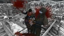 Shinobido-2-Revenge-of-Zen_2012_01-13-12_004