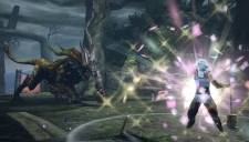 Toukiden screenshot 20042013 010